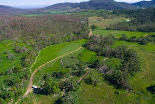 Lot 197 Monaghan Road, Palm Grove, Qld 4800