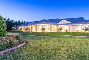 150 Back Larpent Road, Elliminyt, Vic 3250