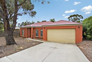 1/16 Peppertree Gove, Strathdale, Vic 3550
