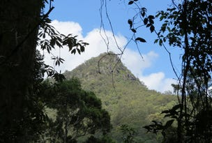 Lot 2, 261 Mount Warning Road, Mount Warning, NSW 2484