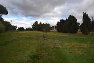 39 Wickham Lane, Young, NSW 2594