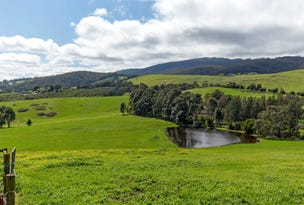 Healesville, address available on request