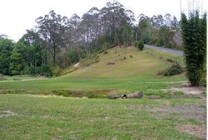 120 Mount Street, Fernmount, Bellingen, NSW 2454