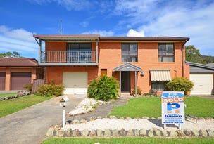 61 Sirius Drive, Lakewood, NSW 2443