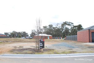 Lot 16 Lake View Place, Mooroopna, Vic 3629