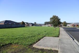 3 Tier Hill Drive, Smithton, Tas 7330