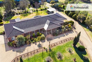 31 Gregadoo Road, Lake Albert, NSW 2650