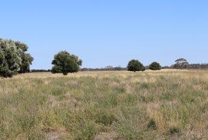659 Cadell Road, Western Flat, SA 5268