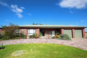 8 Middleton Avenue, Paringa, SA 5340