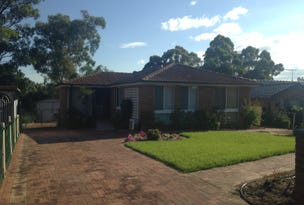 133 Cowper Circle, Quakers Hill, NSW 2763