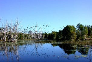 Oil Tree Lagoon Rd, Balldale, NSW 2646