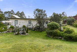 272 Bradys Lake Road, Bradys Lake, Tas 7140