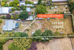 75A William Street, Westbury, Tas 7303