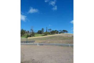 Lot 149 Eales Road, Rural View, Qld 4740