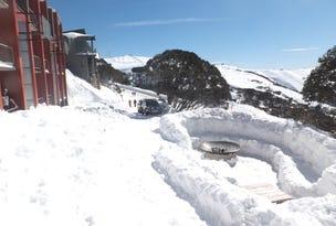 102 Arlberg, Mount Hotham, Vic 3741