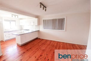 41 Roebuck Crescent, Willmot, NSW 2770