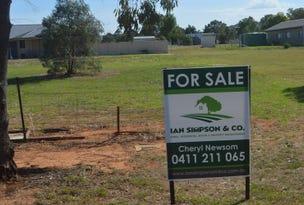Lot 104 McDonald Lane, Canowindra, NSW 2804