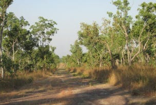 Lot 3004, Litchfield Park Road, Batchelor, NT 0845