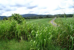 Lot 2, 2 Japoon Silkwood Road, Japoonvale, Qld 4856