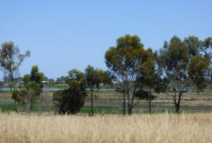 Lot 706 Riley Road, Wellington East, SA 5259