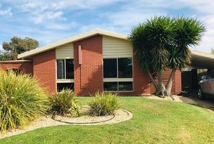 9 Johnston Crescent, Deniliquin, NSW 2710