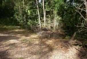 L20 Forest Close, Daintree, Qld 4873