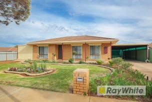 1 Hassell Court, Irymple, Vic 3498