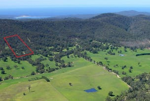 285 Frogs Hollow Lane, Bega, NSW 2550