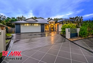 17 Skandia Ct, Newport, Qld 4020