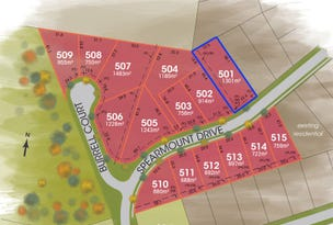 Lot 501, 501 The Foothills Estate, Armidale, NSW 2350
