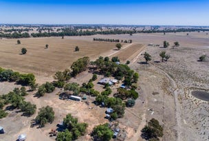 1060 Hopefield Road, Hopefield, NSW 2646