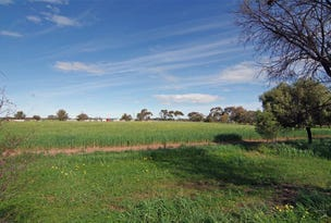 11 77 Collins Road, East Moonta, SA 5558