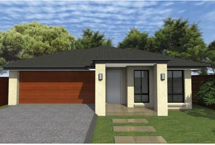 Lot 2817 Dragonfly Dr, Waterford County, Chisholm, NSW 2322