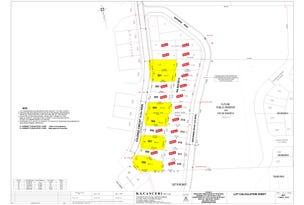 Lot 118 Colenso circuit, Edmondson Park, NSW 2174