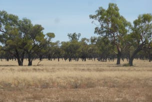 """''Nyngarie & South Comongin"""", Quilpie, Qld 4480"""