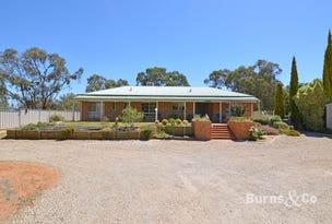 186 Adams Street, Wentworth, NSW 2648
