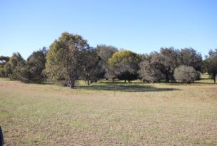 North Wardelocking, River Tan Rd, Piesseville, WA 6315