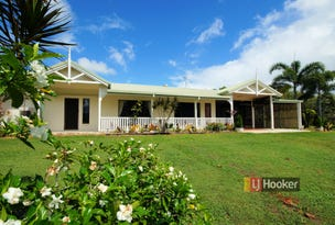 18 Vipiana Drive, Tully Heads, Qld 4854