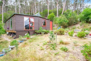 163 Guys Road, Cygnet, Tas 7112