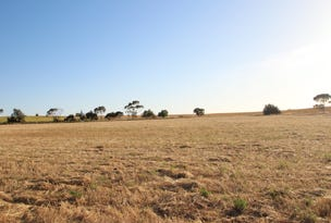 Lot 91 Saddleworth Road, Auburn, SA 5451
