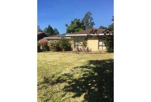 53  Crown Street, Bellingen, NSW 2454