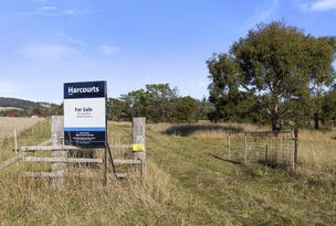 167 Strip Road, Little Swanport, Tas 7190