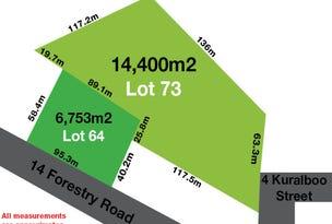 14 Forestry Road and 4 Kuralboo Street, Springbrook, Qld 4213