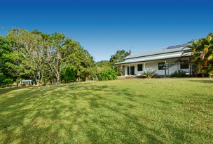 67 Rainforest Road, Tanawha, Qld 4556