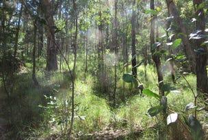 908 Bulldog Road, Tabulam, NSW 2469