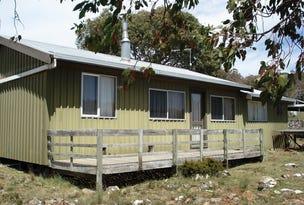 4 Cider Gum Road, Miena, Tas 7030