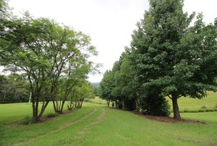 Lot 100 Pappinbarra Rd, Pappinbarra, NSW 2446