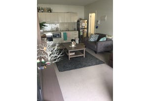 301/33 Frew St, Adelaide, SA 5000