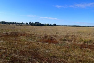 Lot 29 Clydesdale Estate, Rutherglen, Vic 3685