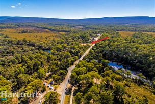 Lot 1 Lyell Highway, Derwent Bridge, Tas 7140